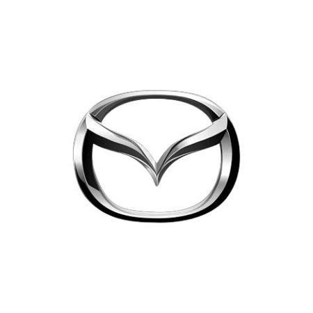 Bez imeni 1 450x450 - 24 Модуль, Mazda 1.3 1.5 1.6 AT/MT Denso с 2009+